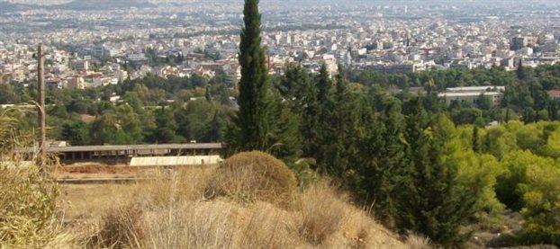 Τι βρίσκει η ΕΛ.ΑΣ στον Ασπρόπυργο, στο Χαϊδάρι και στη Νεμέα
